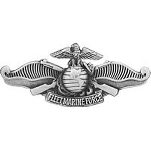 """""""Fleet Marine Force"""" Warfare Pin"""